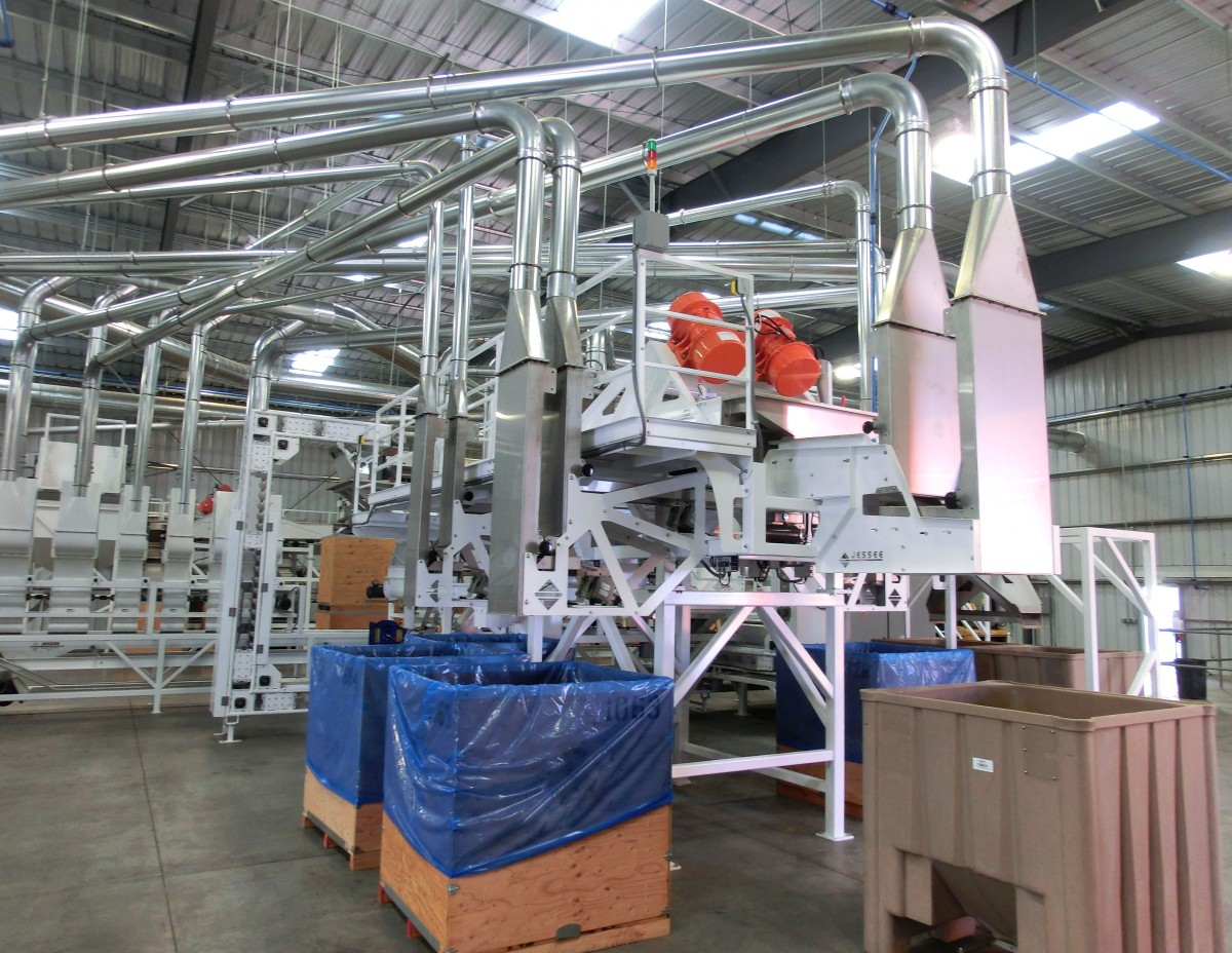 Double Cut Asp Shelling System
